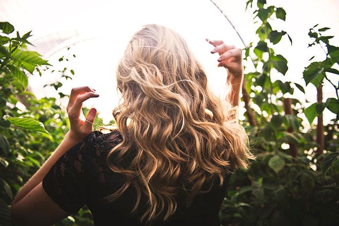 Camomila é um excelente aliado para clarear o cabelo